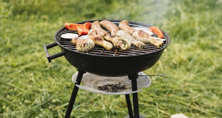 10 Best Portable Gas Grills: Definitive Review (Buyer's Guide) 2021